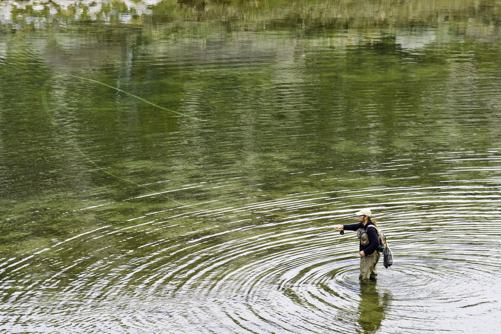 lake for fl banner black img the forest cabins bear ocala park in resort rv rent fishing